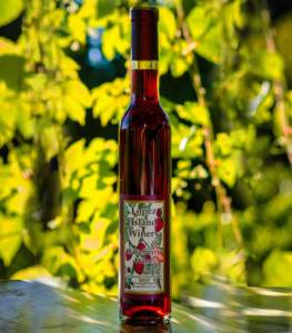 Raspberry Wine is Back!